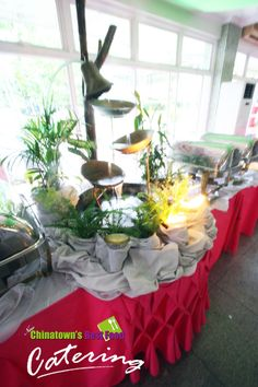 Like The Table Setup And The Highlow Display Catering - Catering buffet table setup