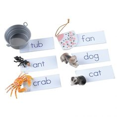 a reading activity- children learn phonetically spelled words and match the labels with the small objects.