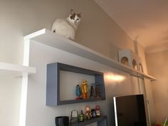 Decoração para quem tem gatos