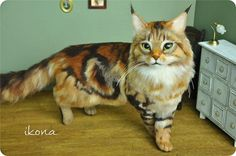 ikona * wool felt Maine Coon cat handmade _ image 1