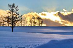 冬の北海道・美瑛の丘の雪原と夕日 Maine, Celestial, Sunset, Nature, Travel, Outdoor, Hokkaido, Sunsets, Outdoors