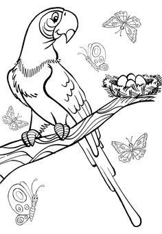 Desenho infantil para colorir de Arara Azul. Risco de pássaro para tecidos. Desenho para colorir - Pintar Desenhos de Colorir