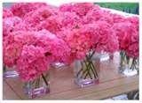 Google Image Result for http://photos.weddingbycolor-nocookie.com/p000016435-m98361-p-photo-270389/thumbnailCAHM5LIE.jpg