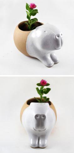 Cute animal planters by Cumbuca Chic    ceramics | illustrated ceramics | animal planters