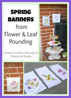 Turn a fun science experiment into spring banners! (Leaf and Flower Pounding)