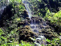Parque de las Cavernas del Rio Camuy, uno de los mejores sitios para visitar en Puerto Rico | B. P. T. #PTB