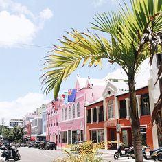 #wedding #dreamwedding #bermuda #beautifuldestination #vacation #summer #summer17 #honeymoon #travel #traveler #travelerslife #worldtravelerslife #beachwedding #palmtrees #beautifuldestination #vacation