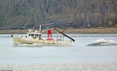 I see this hard-working boat all the time, up-and-down the Delaware River coming from the north beyond Burlington Island, south to Penn's Landing. Here it's at the confluence of Pennypack Creek.