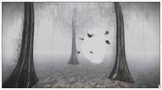 https://flic.kr/p/QEHukd | Fuyuko 17-01-08 005 - The moths at the heart of the woods (berg by norden art, nordan om jordan) | Installation Penumbra by Meilo Minotaur and CapCat Ragu