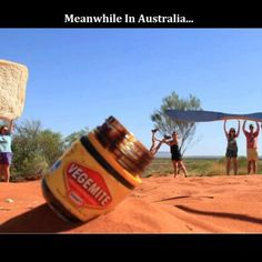 Just give the last bit to me! Aussie Tumblr, Aussie Memes, Australia Meme, Happy Australia Day, Meanwhile In Australia, Funny Memes, Hilarious, It's Funny, Funny Stuff