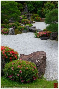 Rock garden in summer, Chion-in temple, Kyoto, Japan Mediterranean Garden Design, Zen Garden Design, Japanese Garden Design, Garden Design Plans, Landscape Design, Bonsai Garden, Garden Pots, Amazing Gardens, Beautiful Gardens