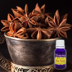 Star Anise Essential Oil (Illicium verum) for aromatherapy, skin care and natural perfume. Tinderbox: supplying pure essential oils since Anise Oil, Blue Glass Bottles, Star Anise, Drying Herbs, Massage Oil, Pure Essential Oils, Herbalism, Seeds, Essentials