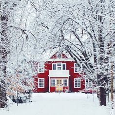 In a world full of snow, be the red house. #regram @danijelivic via @elledecor