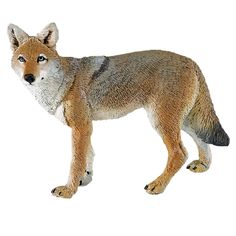 Coyote North American Wildlife Safari Ltd Coyote Animal, My Animal, Lps Pets, Pet Toys, Best Friend Drawings, Animal Action, Adrien Y Marinette, Dangerous Animals, Wildlife Safari