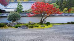 紅葉の京都南禅寺の方丈庭園 2014年11月23日