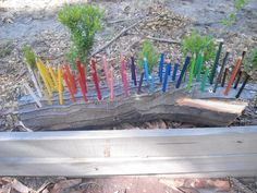 We have been working hard with the drill to make our own natural pencil holder. 25/2/2013