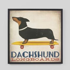 Dachshund Longboards Art Print 71cm x 71cm from The Shelley Panton Store