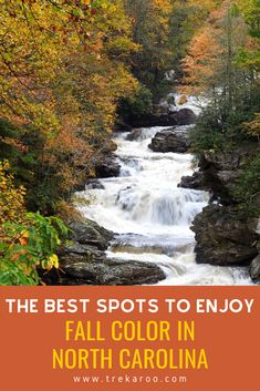 North Carolina fall color is spectacular. This guide highlights some of the best places to enjoy North Carolina fall foliage as well as some fun activities that involve leaf peeping and adventure. See which destinations made our list of favorite North Carolina autumn destinations.        #NorthCarolinaFall #NorthCarolina #FallFoliage #RoadTrip      Pin Photo via Canva Road Trip With Kids, Family Road Trips, Family Travel, North Carolina Beaches, North Carolina Mountains, Road Trip Destinations, Amazing Destinations, Weekend Getaways, Day Trips