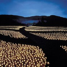 Nara Tokae Festival, Japan: Tens of thousands of candles are lit up in the land of ancient Nara which was the capital, 1300 years ago.
