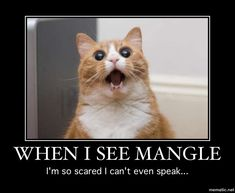 FNAF Meme 3 - Fear the Mangle! by KotOR-MSTR on DeviantArt