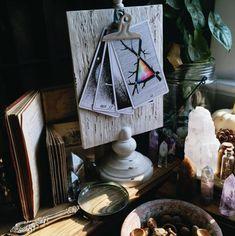 image via @sacraluna the wild unknown tarot altar space  tarot cards, tarot reading, tarot altar, crystals, selenite, plants