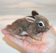 OOAK Needle felted Spring 2 week old Baby Cottontail by SteviT