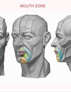 Head & Neck Anatomy book - MOUTH - Estimated completion of this book is April 2016.