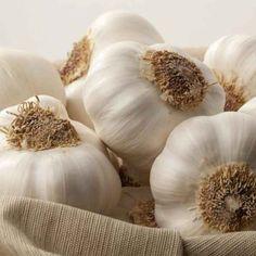 garlic, health care, bays, dinner time, healthy eating, health benefits, detox, health tips, health foods