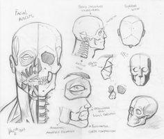 Drawing Human Anatomy Random anatomy sketches 3 by - Human Anatomy For Artists, Human Anatomy Drawing, Body Drawing, Anatomy Study, Comic Drawing, Human Figure Drawing, Figure Drawing Reference, Human Face Sketch, Sketch Manga