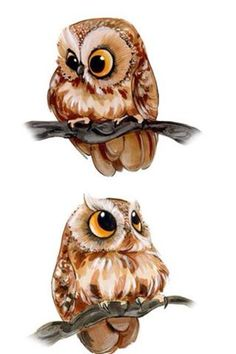 Two Humorous drawings of Owls.