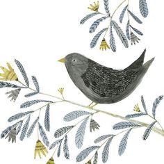 An oldie but a goodie! #birdsofinstagram #illustrator #natureillustration