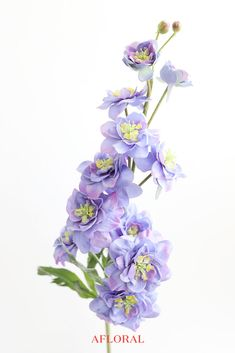 Find artificial wildflowers, like this gorgeous natural touch flower delphinium larkspur in periwinkle with purple highlights. It has that fresh-out-of-the-garden look! Purple Wedding Flowers, Silk Flowers, Orchid Bouquet, Purple Highlights, Delphinium, Artificial Flowers, Outdoor Gardens, Orchids, Dream Wedding