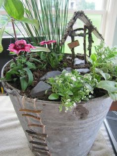 Fancilicious Fairylands: New Fairy Gardens... I love the little ladder,  maybe make one with twigs and some twine?