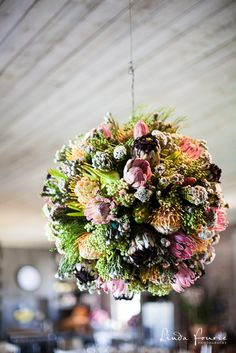 Fynbos balls made by Deirdre Loxton Hanging Flower Baskets, Hanging Planters, Our Wedding Day, Wedding Bride, Wedding Venues, Wedding Ideas, Hanging Centerpiece, Protea Bouquet, Safari Wedding