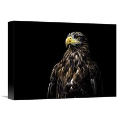 Global Gallery, Christian Lechtenfeld 'Ego' Stretched Canvas Artwork