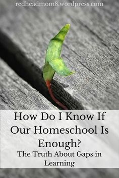 How Do I Know If Our Homeschool Is Enough?