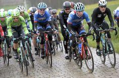 Omloop Het Nieuwsblad Elite 2014 - The peloton