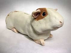 Jasmine is a white stoneware sculpted guinea piggy bank. She has a glowing coat and is a slender, agile guinea pig with dappled hindquarters.