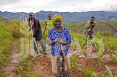In sub-Saharan Africa, women provide most of the labour for producing basic food crops. In the region, agricultural productivity could increase by as much as 20 per cent if women's access to resources were equal to men's.  ©IFAD/Susan Beccio