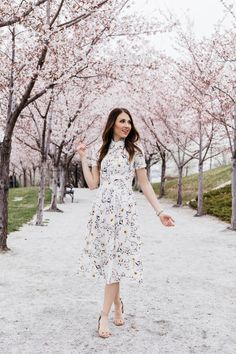 IVY CITY CO: Anna Dress in Spring Floral (Pre-Order Ships April 28th)