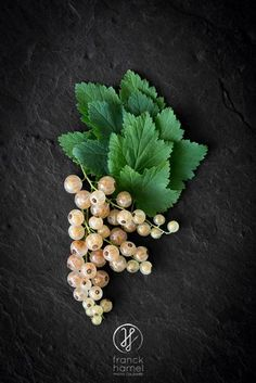 White Currants by Franck Hamel