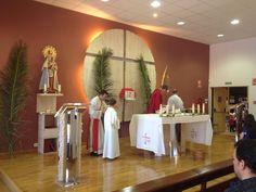 Misa del Domingo de Ramos 13/04/14