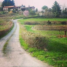 Get lost with me | Biellese countryside #TagsForLikes.COM #TFLers @Chris Meyer #explorebiella #biella #piedmont #italy #art #history #architecture #italian #life #love #travel #lifestyle #leisure #food #foodporn #church #landscape #gallery #museum #fashi