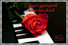 Gyönyörű szép éjszakát,Legyen csodás éjszakád,Légy napsütés, édes remegés...,Köszönöm a Barátságodat,Kellemes délutáni pihenést,Jó néha a sötétben,Kellemes délutánt....,Jó reggelt, szép napot,Jó reggelt, vidám napot ,Szép napot mindenkinek, - suzymama43 Blogja - Humor,Idézetek,képek,Különös tájak,receptek,Szobrok,Várak,versek,viccek,video,Ünnepek ,