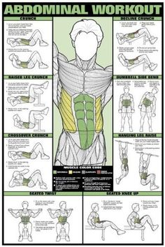 Home Gym Abdominal Exercises Workout Poster