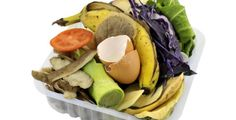 Odpad z kuchyně se dá využít mnoha způsoby