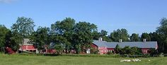 In the heart of the Hudson Valley is is so much fun to visit and my daughter loves to sample<3  Old Chatham Sheepherding Company  155 Shaker Museum Road,Old Chatham,NY 12136 1-888-SHEEP-60 (743-3760) Fax 518-794-7641