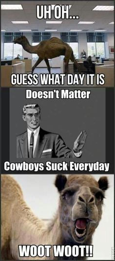 Wednesday, Cowboys suck everyday!!!