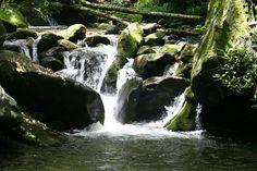 Waterfall at Gatlinburg, TN http://www.freeredirector.com