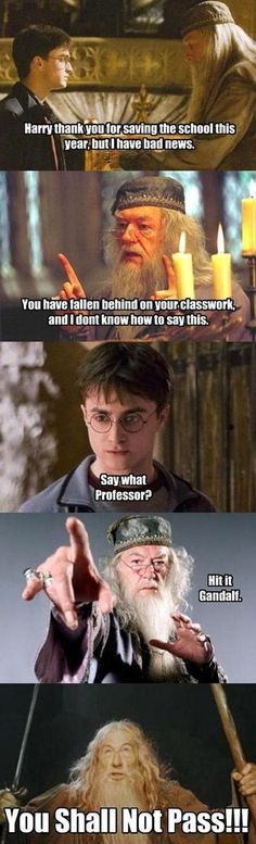 You shall Not Pass!!! Harry Potter Funny